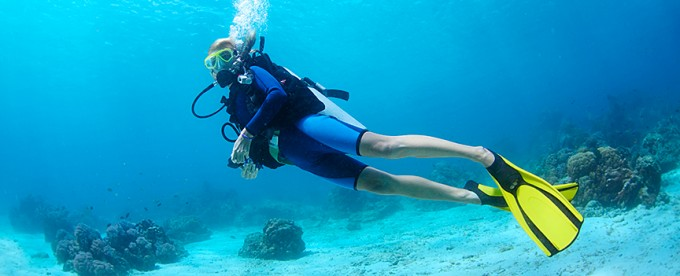 my scuba diving experience